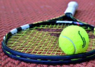 tennis-3552164_1280.jpeg