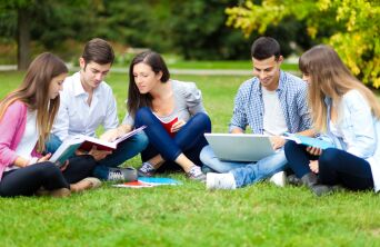 Students studying together on lawn